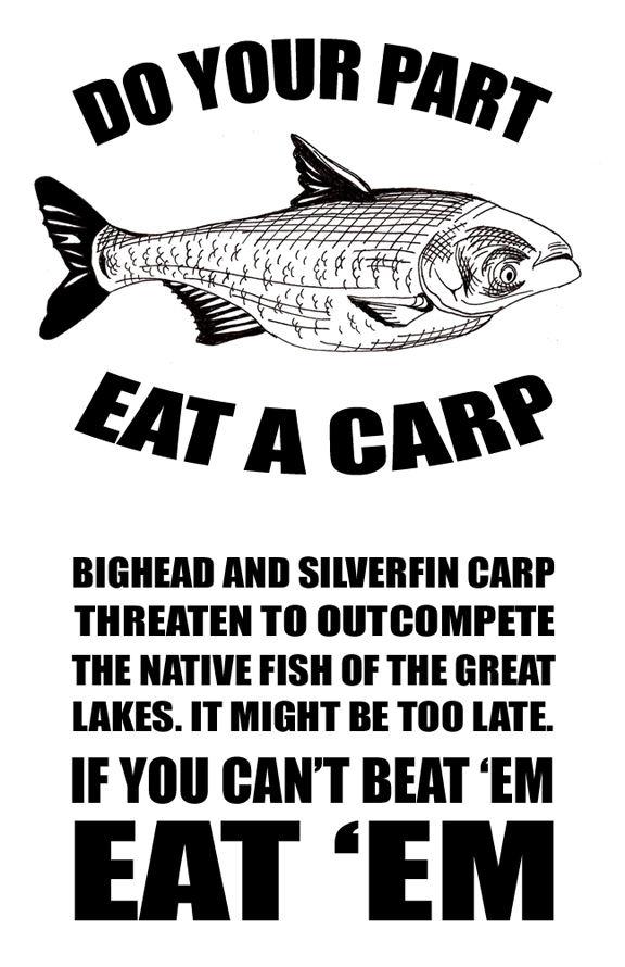 Fishing and hunting v1 for Can you eat carp fish