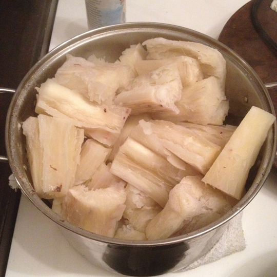 Cassava (yucca). Paul drank the boiling water like tea
