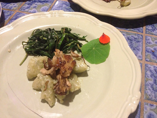 Watercress gnocchi with roasted hen-of-the-woods with a side of dandelion greens